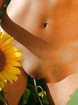 Funky photo-session with sunflowers