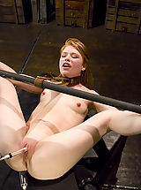 dildo party, Sexy shaved red head get the bondage of her life on Hogtied.